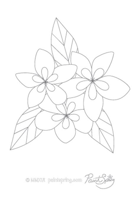 Coloring Pages Lotus Flower