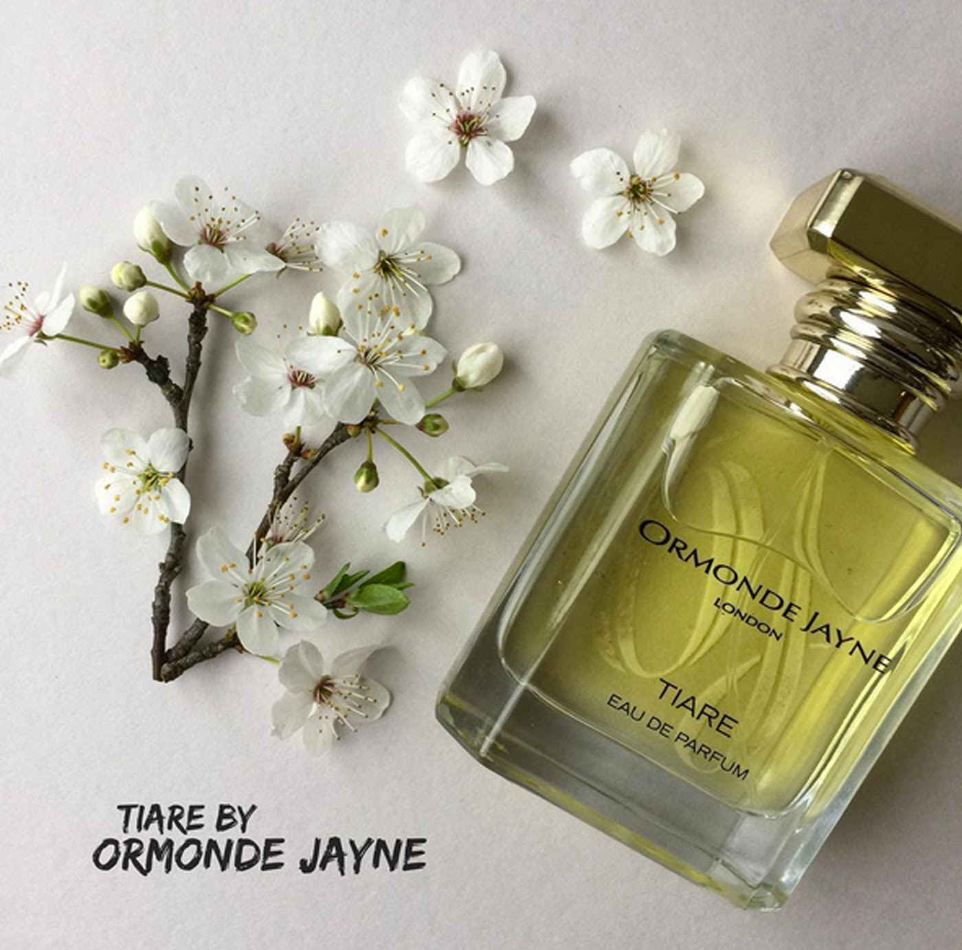 Best Fragrances For Mothers Day; We Wear Perfume We Wear Perfume