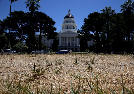 California drought most severe in 1,200 years, study says