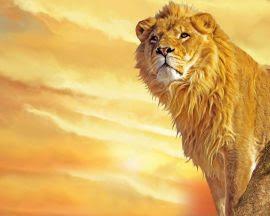 Papel de parede 'Leão atento'
