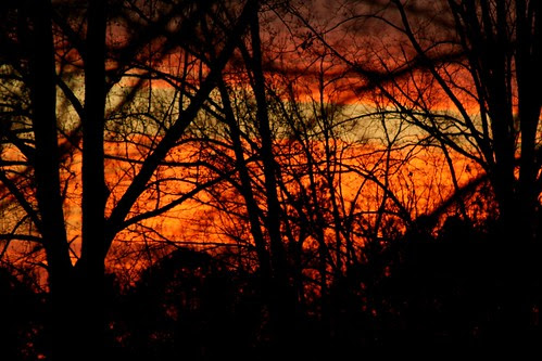 Vivid Sunset this evening