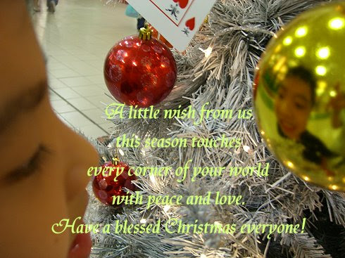 Blessed Christmas and New Year