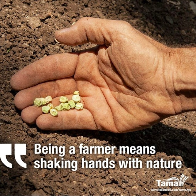 Quotes About Farming 161 Quotes
