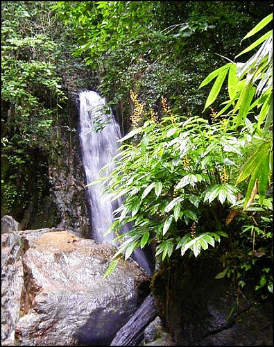 Bang Pae Waterfall 2007
