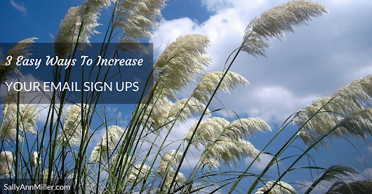 3 Easy Ways To Increase Your Email Sign Ups