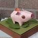 3 pig:varken