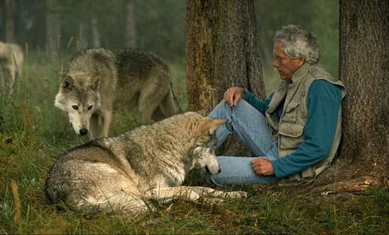 Ζώντας με τους λύκους (4)