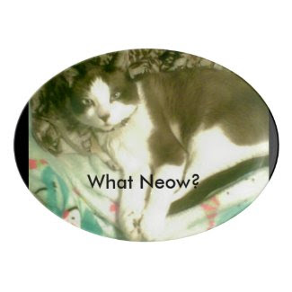 snowshoe What Neow? kitty Porcelain Serving Platter