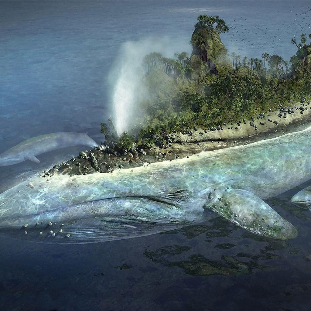 Surrealism Whale