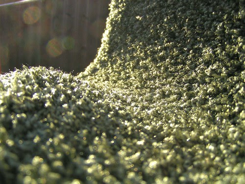 the landscape of a rolling bathmat