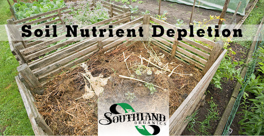 Soil Nutrient Depletion: Fall's Dilemma
