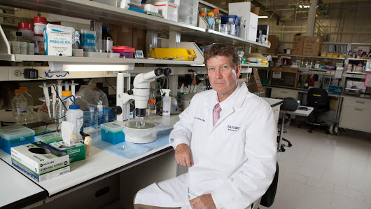 Sanford finding initial success in stem cell trials