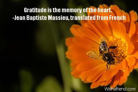 Gratitude Is The Memory Of The Thank You Quote