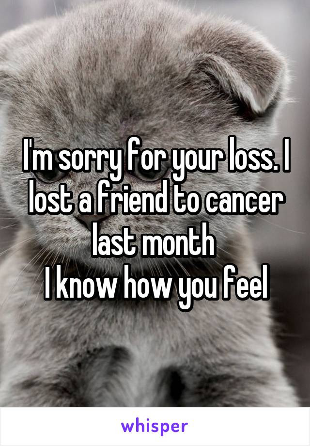 Im Sorry For Your Loss I Lost A Friend To Cancer Last Month I Know