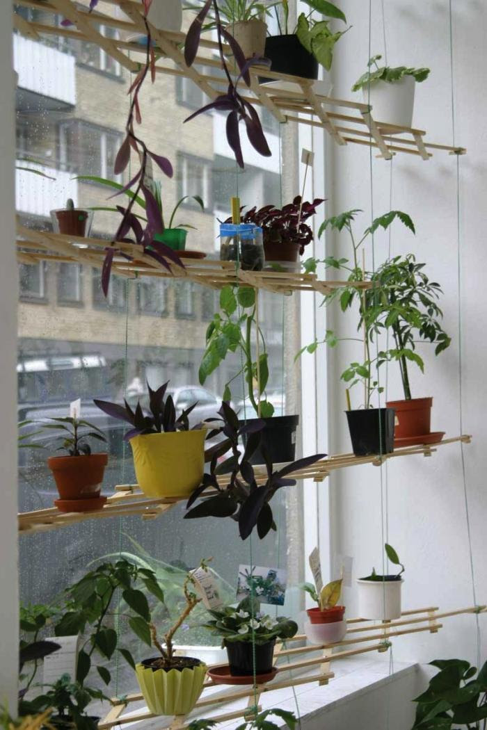 Indoor Plant Shelves Insert Natural Appeal Into The Fresh Interior