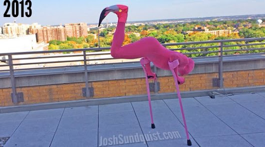 Paralympian Josh Sundquist owns Halloween with hilarious Flamingo costume | Larry Brown Sports
