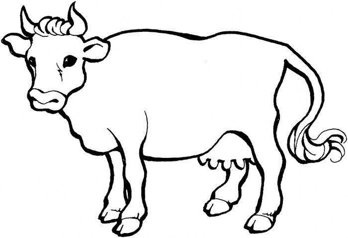 Coloriage Vaches Imprimer 1001 Animaux