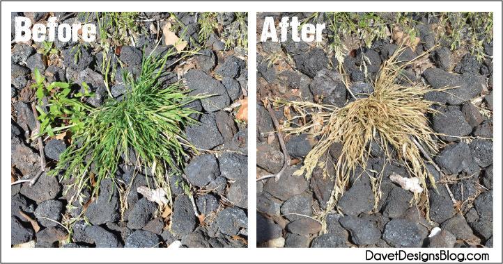 DIY All Natural Thieves Weed Killer supplies