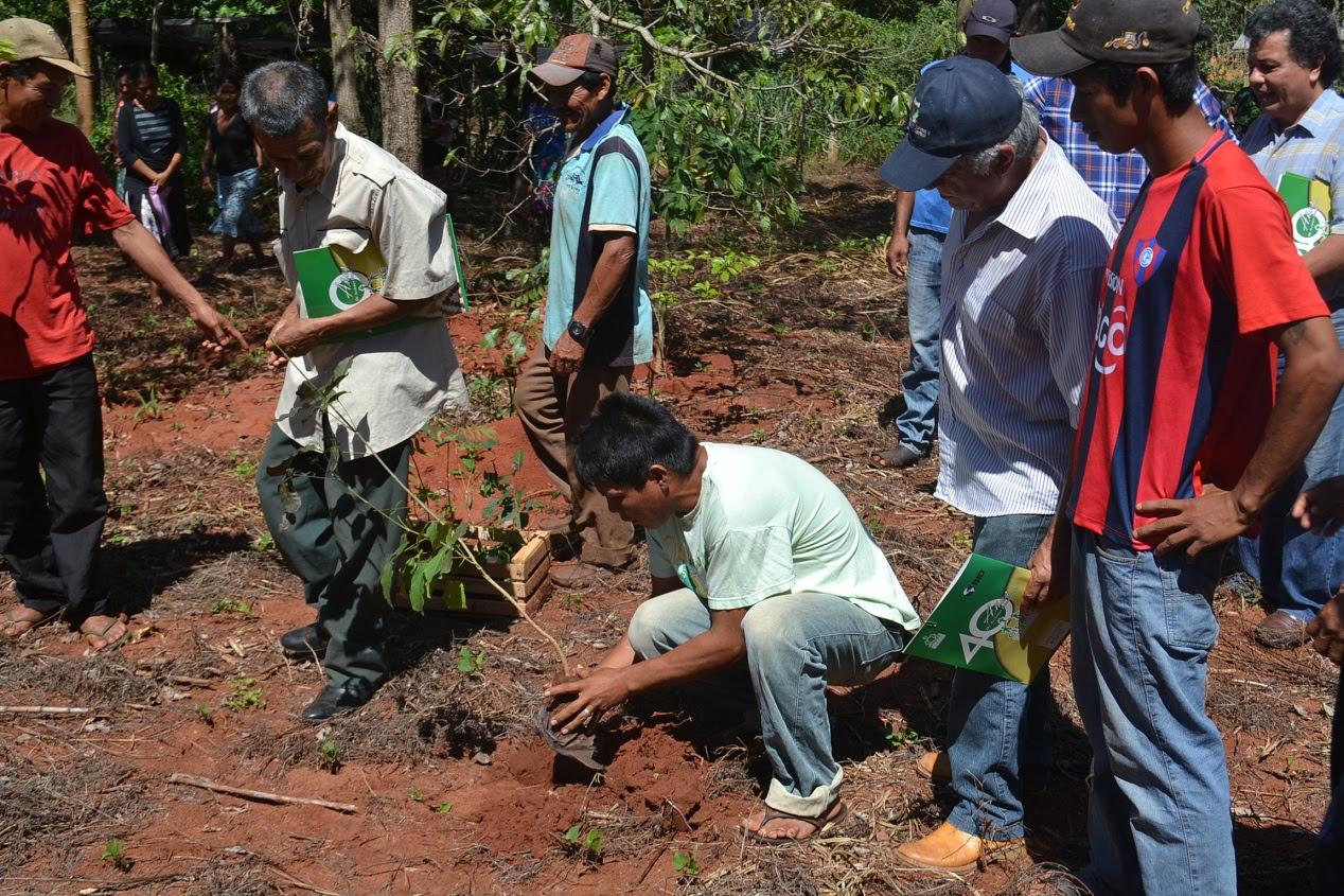 Resultado de imagen para comunidad indígena Vy'a Pave, de Azote'y,