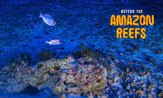 Save the Amazon Reef. Sign up!