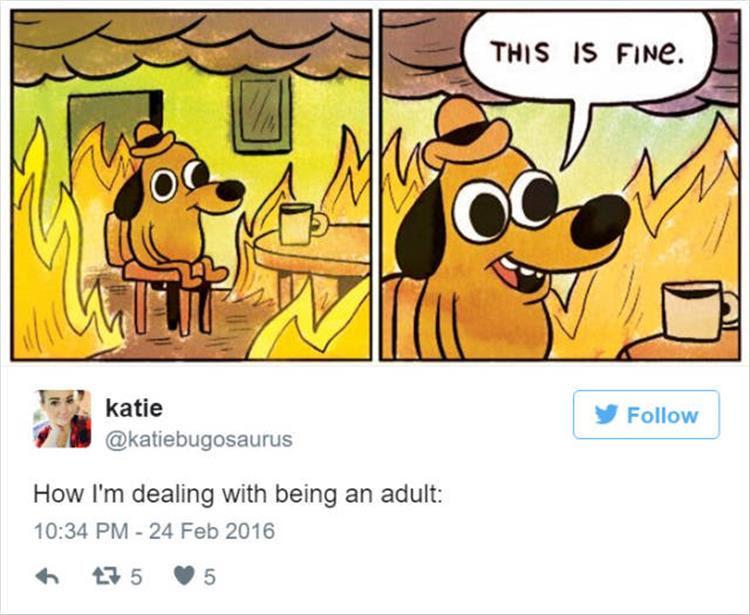 25 Funny Twitter Quotes That Accurately Sum Up What Its Like Being