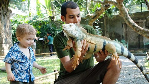Bali animal tour is one of the most wanted tours in Bali from Online Bali Driver. Beside of Bali culture...