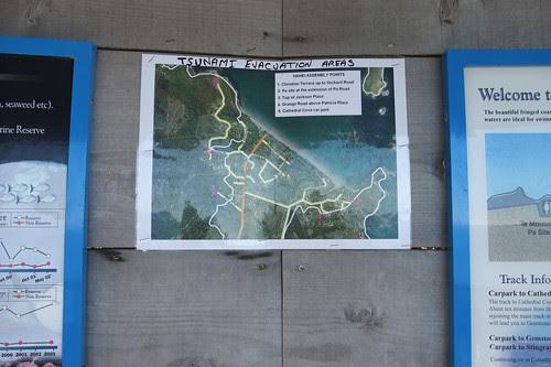 tsunami plan