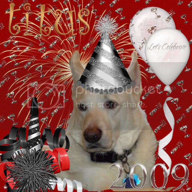 Dog,Happy New Year