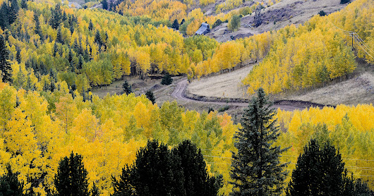 Colorado fall colors guide: Where and when to go