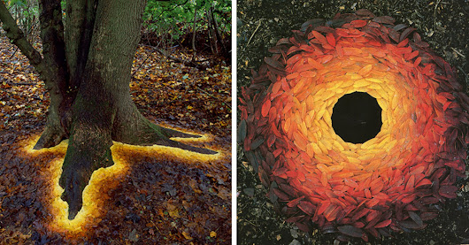 Man Arranges Leaves, Sticks, And Stones To Create Magical Land Artworks | Top13