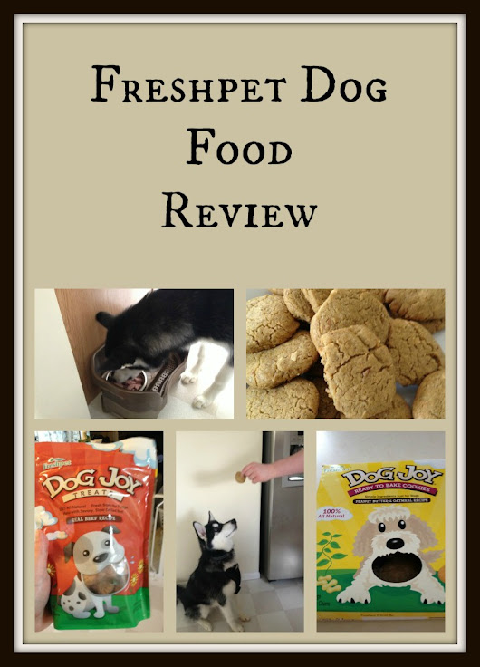 Freshpet Dog Food Review