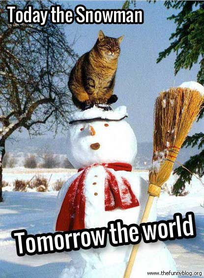 The 50 Funniest Winter Memes Of All Time Gallery