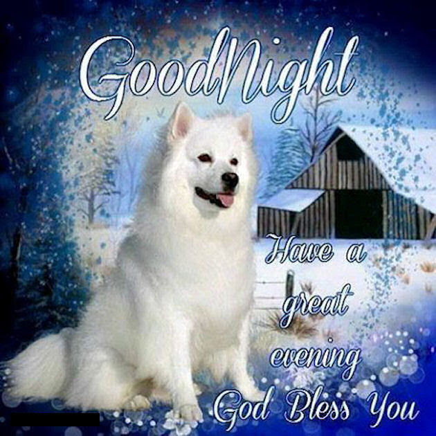 Good Night Have A Great Evening Winter Quote Pictures Photos And