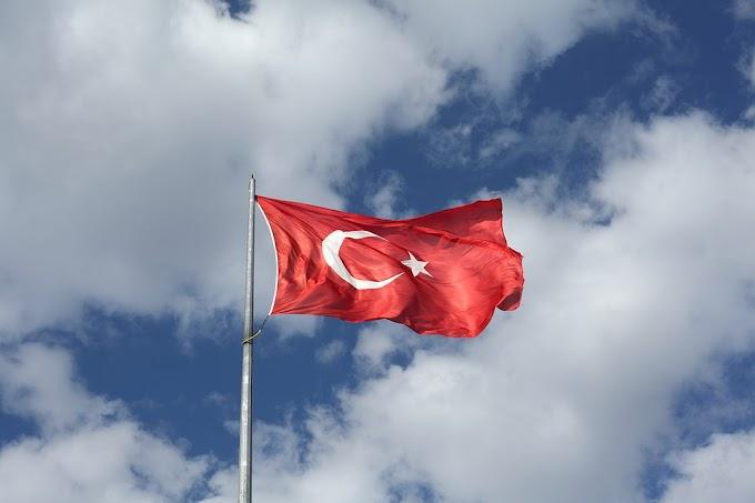 الاستثمار في الفرنشايز في تركيا
