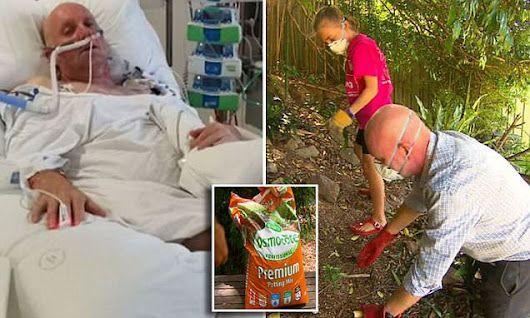 Sydney man put in coma after gardening nearly kills him | Daily Mail Online