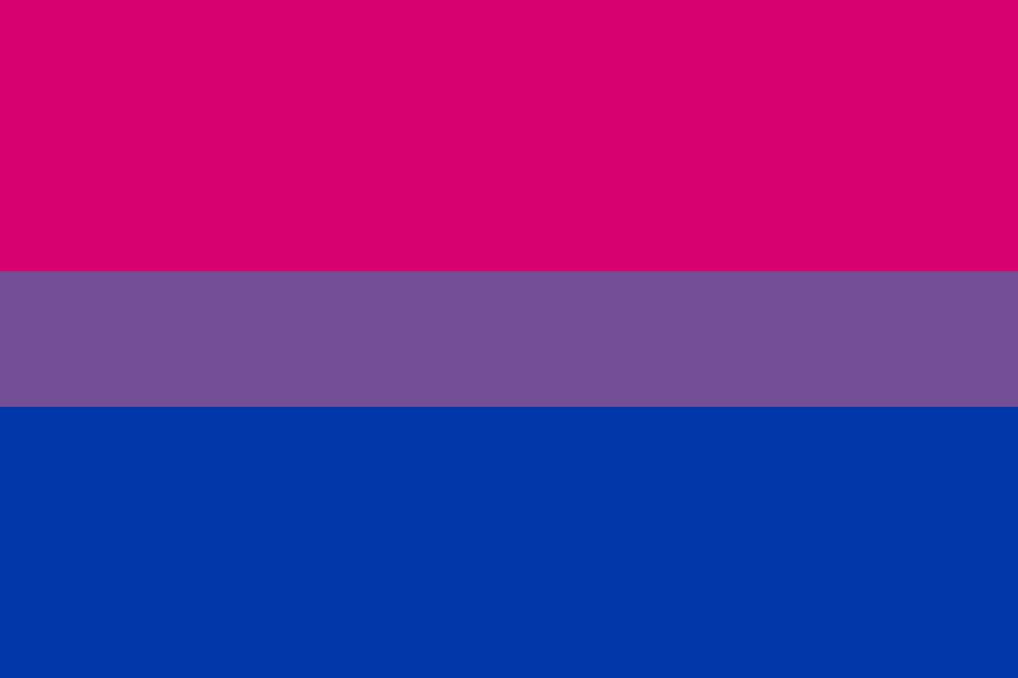 2013-09-19-bisexual-bisexual_pride_flag.jpg