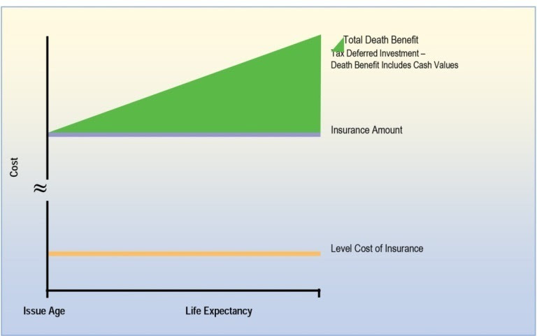 Deciding Which Life Insurance Policy Is Right For You