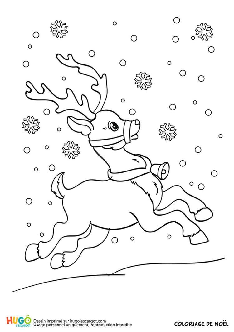 Rudolf le renne du p¨re No l est