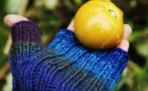 Maine Morning Mitts from Kureyon Noro