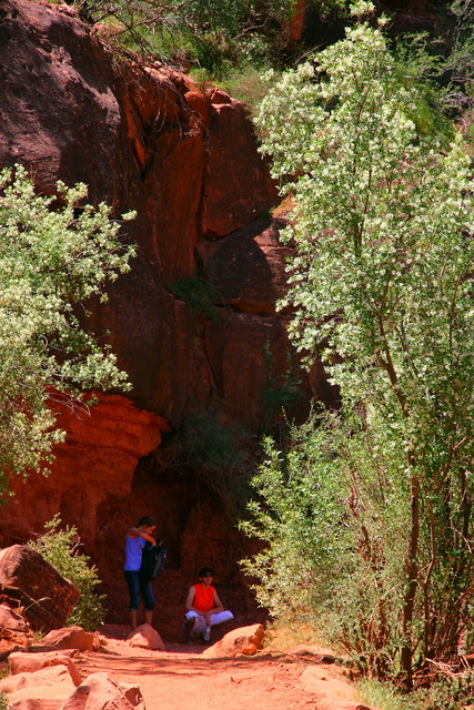 IMG_2491 Bright Angel Trail