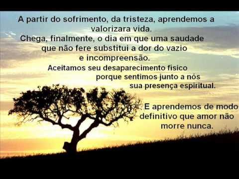 Blog Do Renan Filho Mensagem De Solidariedade A Família Do Amigo