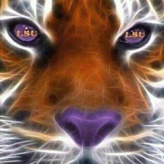 GEAUX LSU TIGERS