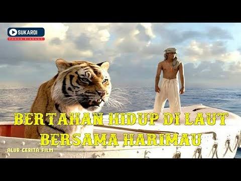 Petualangan Manusia dan Harimau | Alur Cerita Film Life of Pi