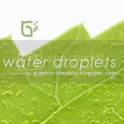 How to Create Water Droplets in Photoshop