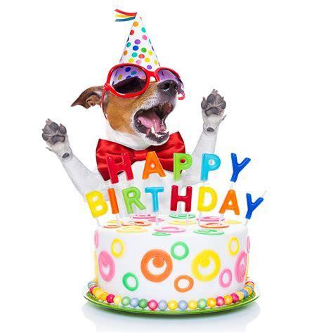 15 Funniest Happy Birthday Cards