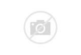 Millennium Airport Hotel Dubai Photos