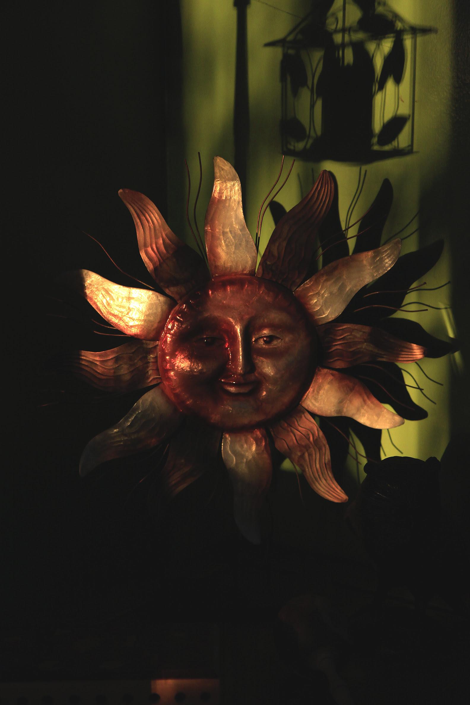 sun in the sun