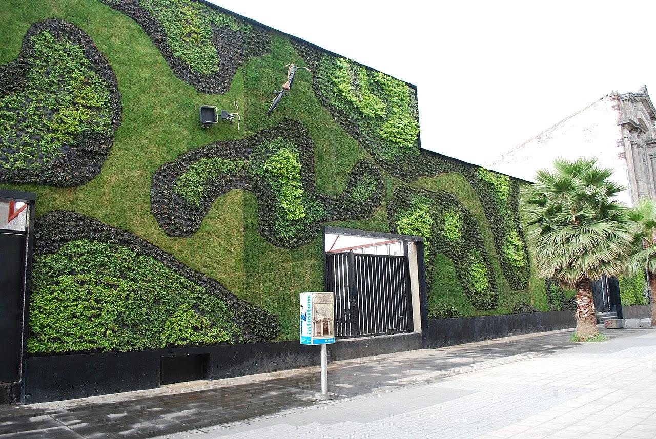 Mimarın Gözünden Bitki Duvarı Dikey Bahçe Yosun Duvar Ve Yosun