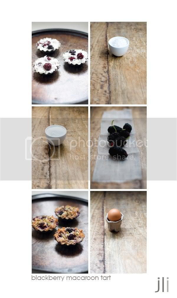 blackberry macaroon tart,heidi swanson,coconut,passover,sydney,food photography,jillian leiboff imaging