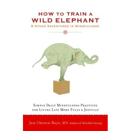 a review of How to Train a Wild Elephant: And Other Adventures in Mindfulness
